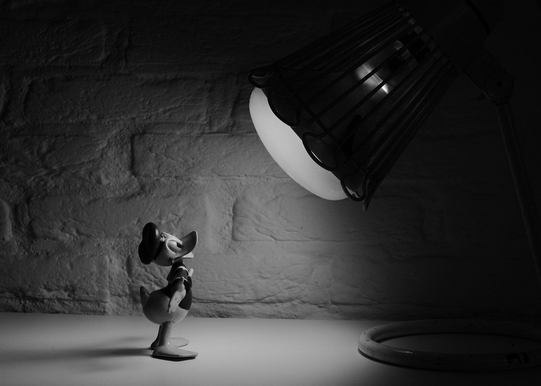 Life Insurance Company Spotlight