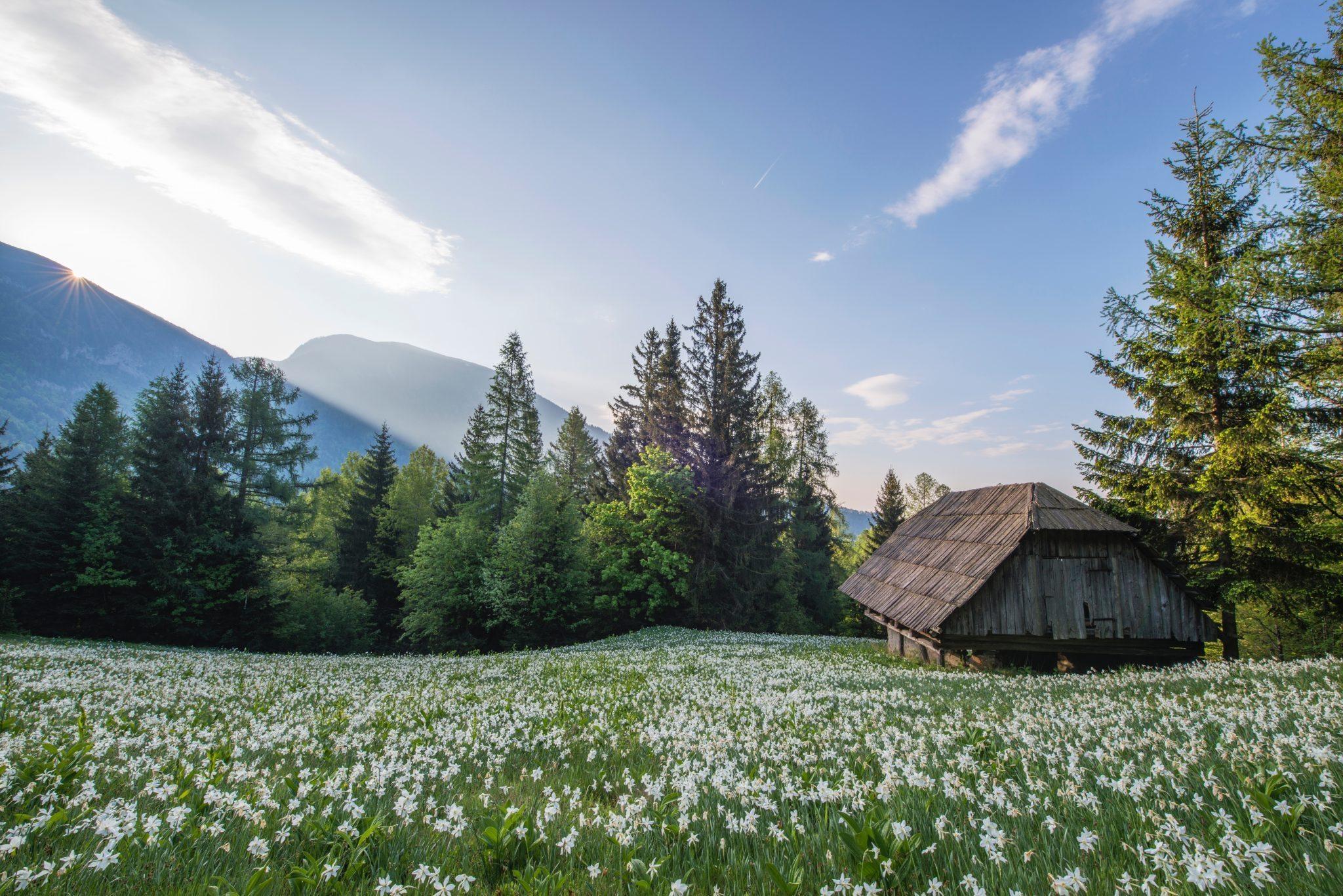 Открыток, красивые картинки с деревеньками