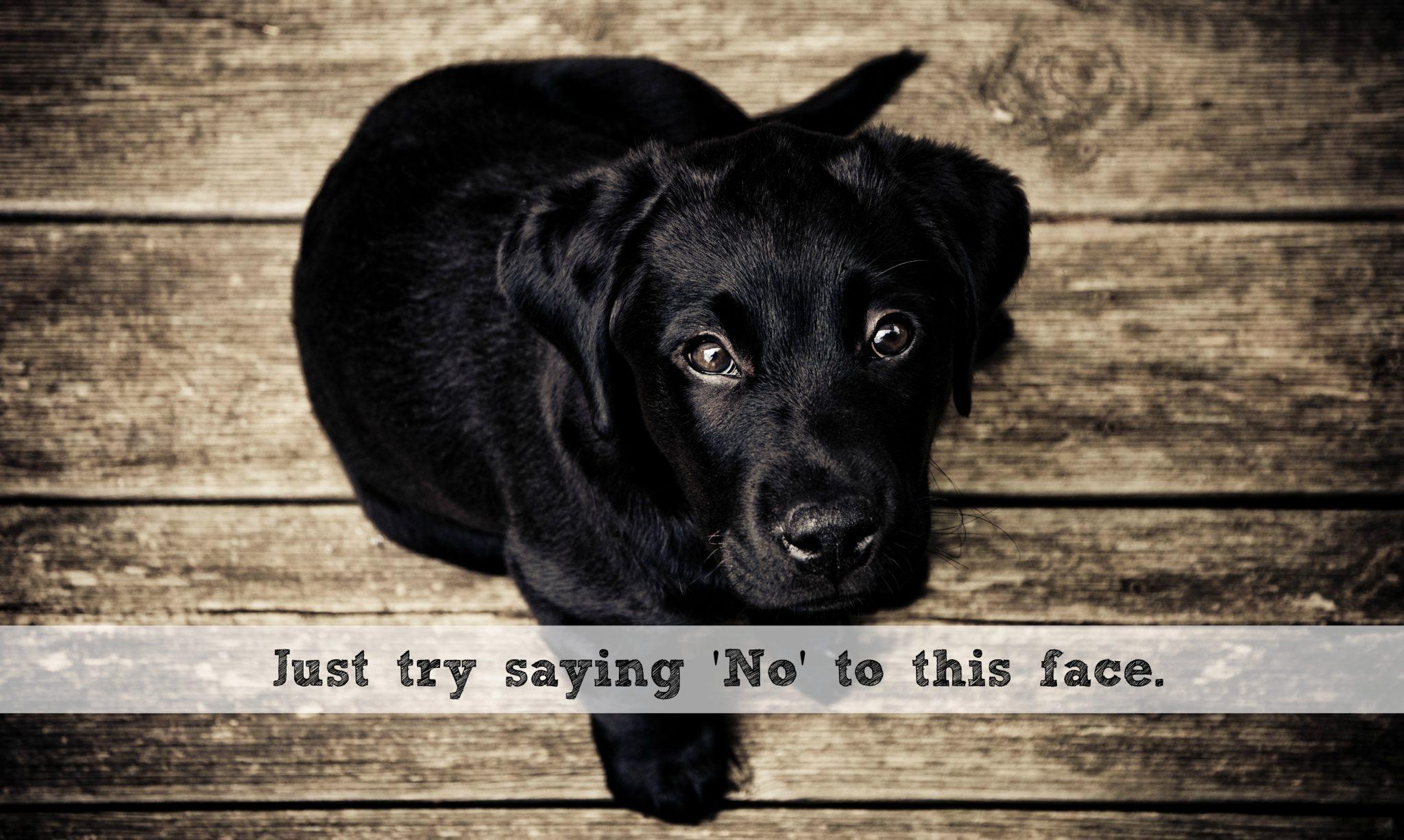 "When Life Insurance Companies Say ""No"""